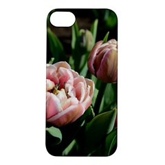 Tulips Apple Iphone 5s Hardshell Case by anstey