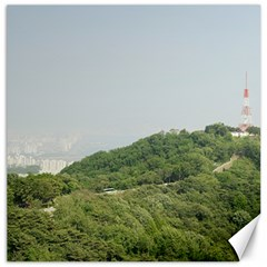 Seoul Canvas 12  X 12  (unframed) by anstey