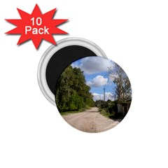Dusty Road 1 75  Button Magnet (10 Pack) by ansteybeta