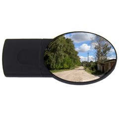 Dusty Road 4GB USB Flash Drive (Oval) by ansteybeta