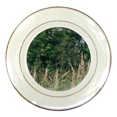 Grass And Trees Nature Pattern Porcelain Display Plate by ansteybeta