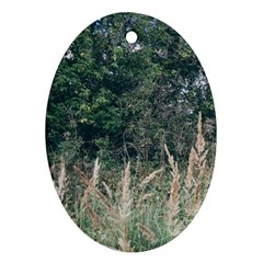 Grass And Trees Nature Pattern Oval Ornament (two Sides) by ansteybeta