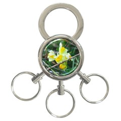 Linaria 3 Ring Key Chain by ansteybeta
