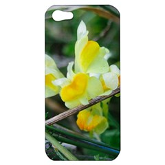 Linaria Apple Iphone 5 Hardshell Case by ansteybeta