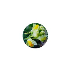 Linaria Flower 1  Mini Button by ansteybeta