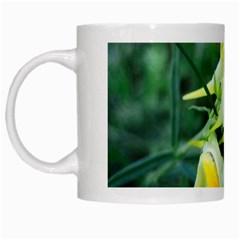 Linaria Flower White Coffee Mug by ansteybeta