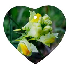 Linaria Flower Heart Ornament (two Sides) by ansteybeta