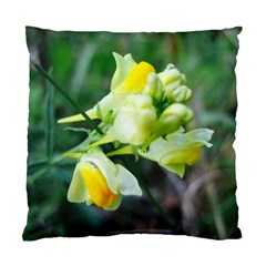 Linaria Flower Cushion Case (two Sided)  by ansteybeta
