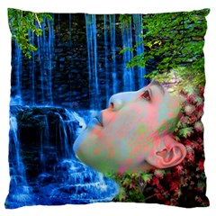 Fountain Of Youth Large Cushion Case (two Sided)  by icarusismartdesigns