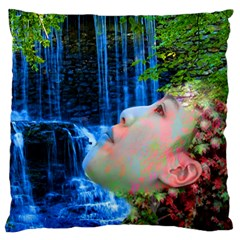 Fountain Of Youth Standard Flano Cushion Case (two Sides) by icarusismartdesigns