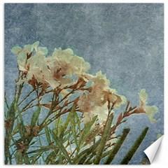 Floral Grunge Vintage Photo Canvas 16  X 16  (unframed) by dflcprints
