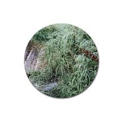 Rustic Grass Pattern Magnet 3  (round) by ansteybeta
