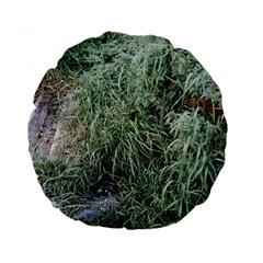 Rustic Grass Pattern Standard 15  Premium Round Cushion  by ansteybeta