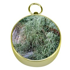 Rustic Grass Pattern Gold Compass by ansteybeta