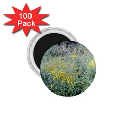 Yellow Flowers, Green Grass Nature Pattern 1 75  Button Magnet (100 Pack) by ansteybeta
