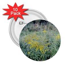 Yellow Flowers, Green Grass Nature Pattern 2 25  Button (10 Pack) by ansteybeta
