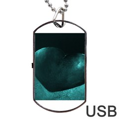 Teal Heart Dog Tag Usb Flash (two Sides)  by timelessartoncanvas
