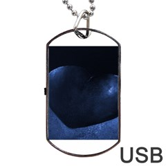 Blue Heart Collection Dog Tag USB Flash (One Side) by timelessartoncanvas