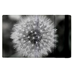 Modern Daffodil Seed Bloom Apple iPad 3/4 Flip Case by timelessartoncanvas