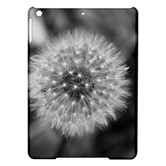 Modern Daffodil Seed Bloom Ipad Air Hardshell Cases by timelessartoncanvas