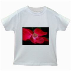 Bright Red Rose Kids White T Shirts