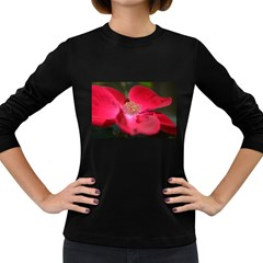 Bright Red Rose Women s Long Sleeve Dark T Shirts by timelessartoncanvas