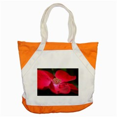 Bright Red Rose Accent Tote Bag  by timelessartoncanvas