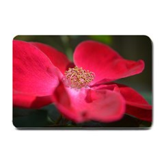 Bright Red Rose Small Doormat  by timelessartoncanvas
