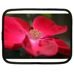 Bright Red Rose Netbook Case (xl)  by timelessartoncanvas