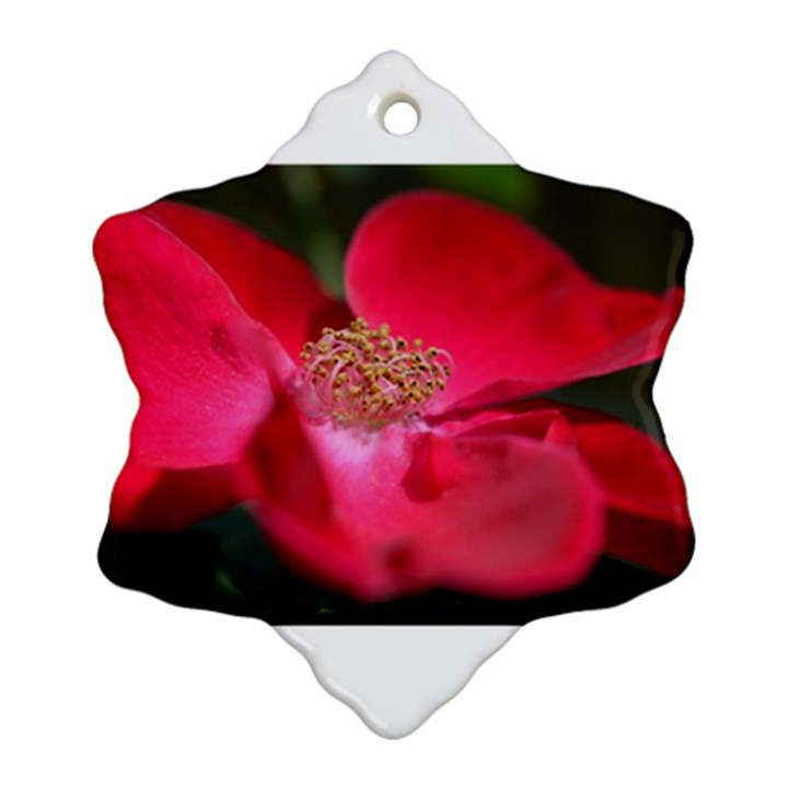 Bright Red Rose Snowflake Ornament (2-Side)