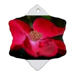 Bright Red Rose Snowflake Ornament (2-Side) Back