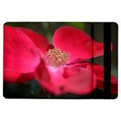 Bright Red Rose Ipad Air 2 Flip by timelessartoncanvas