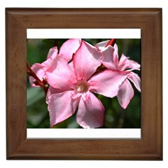 Pink Oleander Framed Tiles by timelessartoncanvas