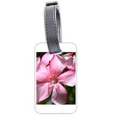 Pink Oleander Luggage Tags (one Side)  by timelessartoncanvas