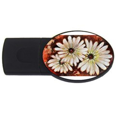 Fall Flowers No  3 Usb Flash Drive Oval (2 Gb)  by timelessartoncanvas