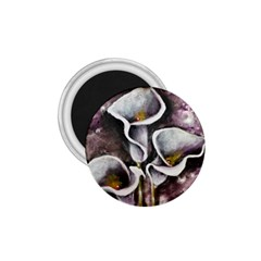Gala Lilies 1 75  Magnets by timelessartoncanvas