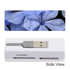 Bright Blue Flowers Memory Card Reader (stick)