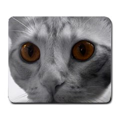 Funny Cat Large Mousepads by timelessartoncanvas