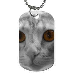 Funny Cat Dog Tag (two Sides) by timelessartoncanvas
