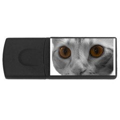 Funny Cat Usb Flash Drive Rectangular (4 Gb)  by timelessartoncanvas