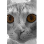 Funny Cat 5.5  x 8.5  Notebooks Back Cover