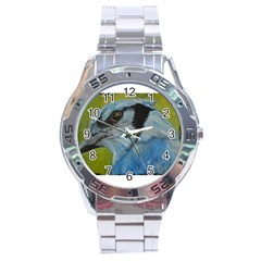 Blue Jay Stainless Steel Men s Watch by timelessartoncanvas
