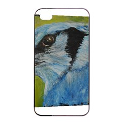 Blue Jay Apple Iphone 4/4s Seamless Case (black)