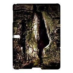 A Deeper Look Samsung Galaxy Tab S (10 5 ) Hardshell Case