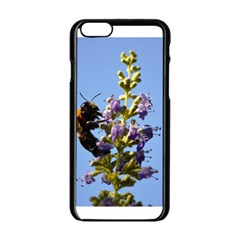 Bumble Bee 1 Apple Iphone 6 Black Enamel Case by timelessartoncanvas