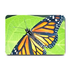 Butterfly 2 Small Doormat  by timelessartoncanvas