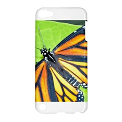 Butterfly 2 Apple Ipod Touch 5 Hardshell Case by timelessartoncanvas