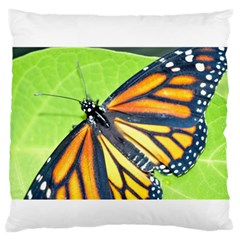 Butterfly 2 Large Flano Cushion Cases (two Sides)  by timelessartoncanvas