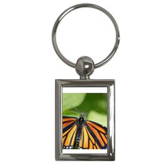 Butterfly 3 Key Chains (rectangle)  by timelessartoncanvas