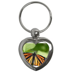 Butterfly 3 Key Chains (heart)  by timelessartoncanvas